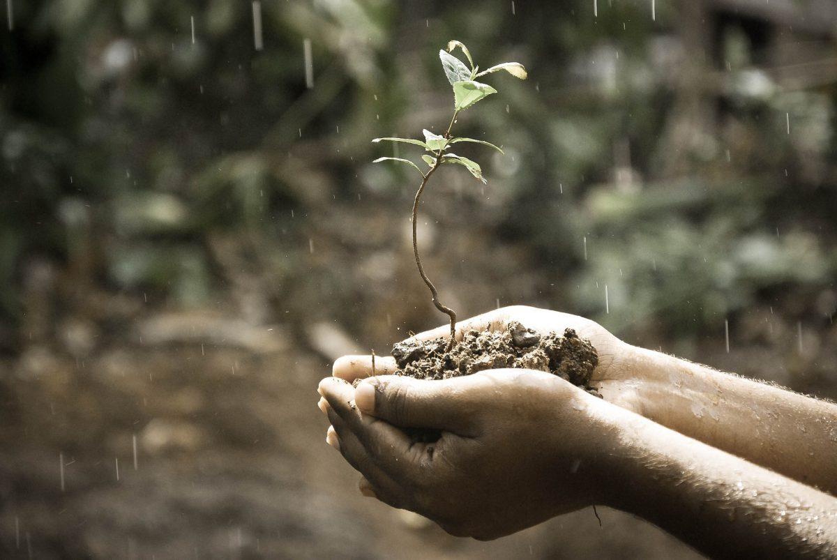 3 stappen om tegenslagen om te buigen in groeikansen